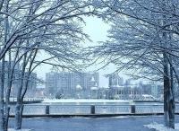 Зима вернулась